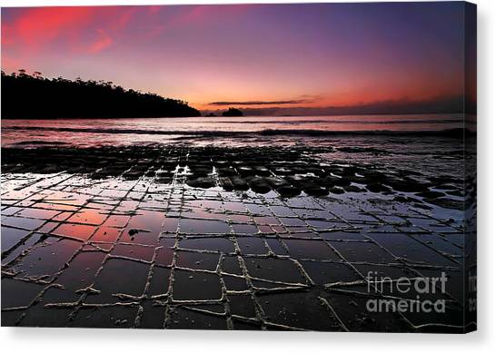 Tesselated Pavement Sunrise Canvas Print