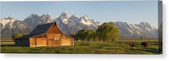 Teton Barn With Bison Canvas Print