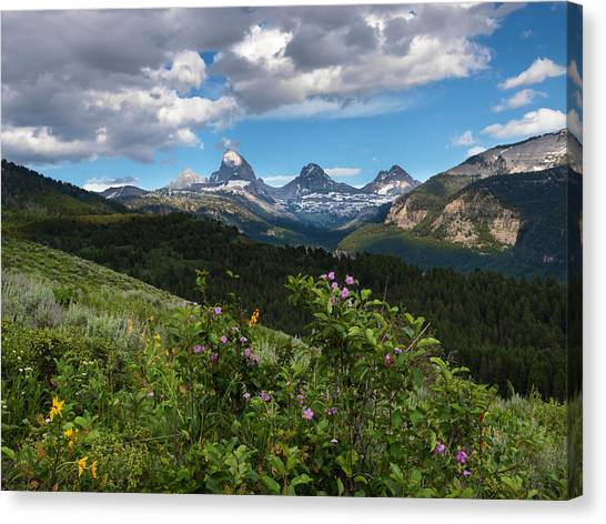 Teton National Forest Canvas Print - Teton Range by Leland D Howard