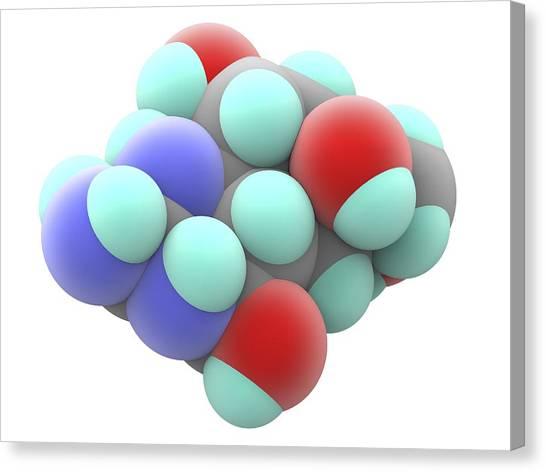 Molecular Biology Canvas Print - Tetrodotoxin Ttx Neurotoxin Molecule by Alfred Pasieka
