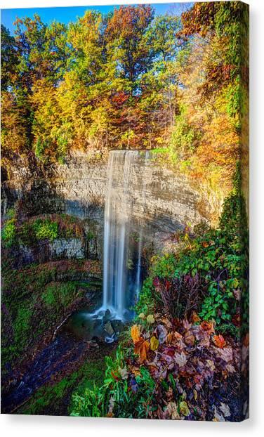 Tews Falls Canvas Print by Craig Brown