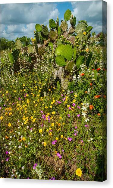 Texas Bouquet Canvas Print