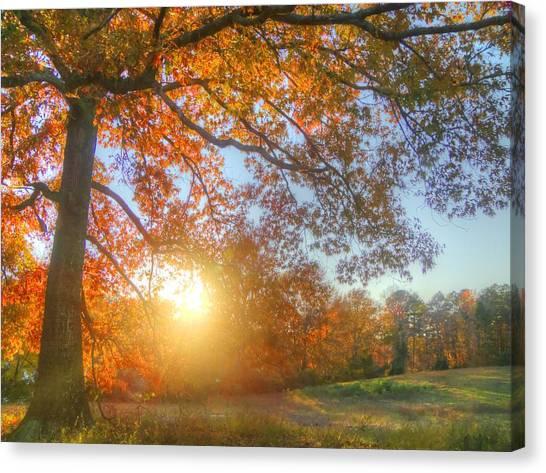 Texas Fall Colors 002 Canvas Print
