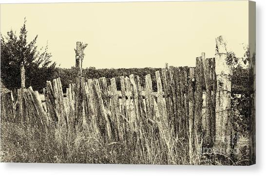 Texas Fence In Sepia Canvas Print