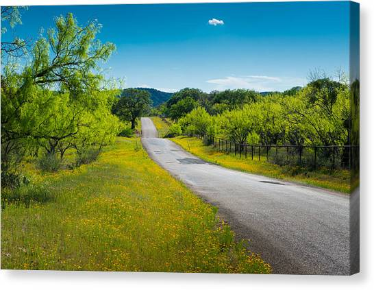 Texas Hill Country Road Canvas Print