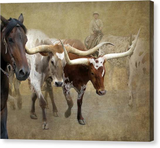 Saddles Canvas Print - Texas Longhorns by Angie Vogel