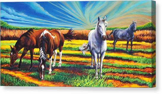 Texas Quarter Horses Canvas Print