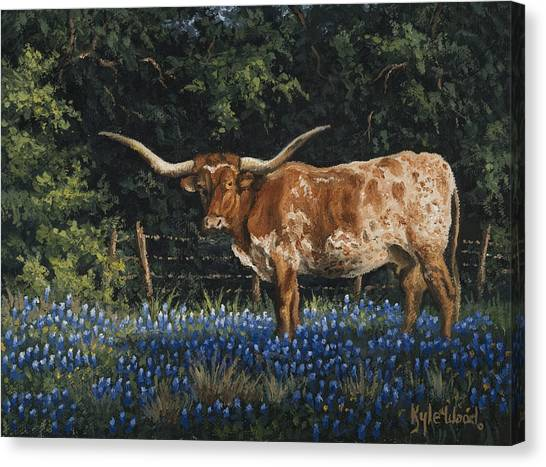 Bluebonnets Canvas Print - Texas Traditions by Kyle Wood