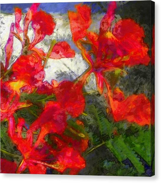 Textured Flamboyant Flowers - Square Canvas Print