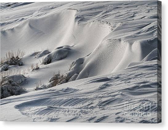 Textures Of Snow Canvas Print