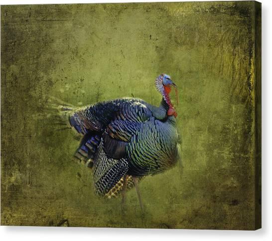 Thanksgiving Is Coming Better Run Better Run Canvas Print
