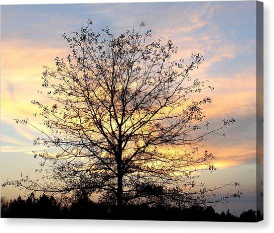 Thanksgiving Tree Canvas Print by EG Kight