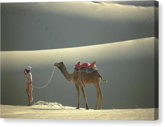 Thar Desert Canvas Print - Thar Desert, Rajasthan, India by Peter Adams