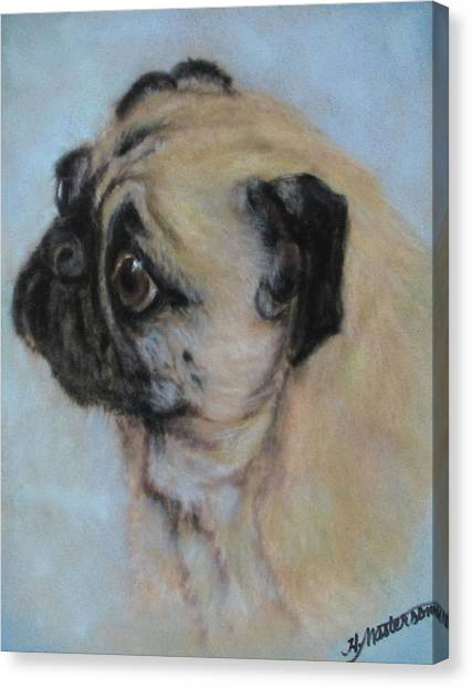 Pug's Worried Look Canvas Print