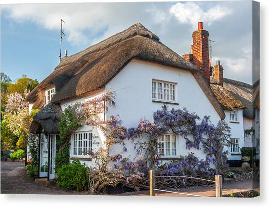 Thatched Cottage In Otterton Devon Canvas Print by David Ross