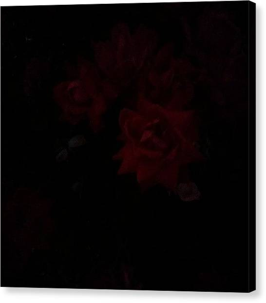 Red Roses Canvas Print - Dark Roses by Courtney Trivette