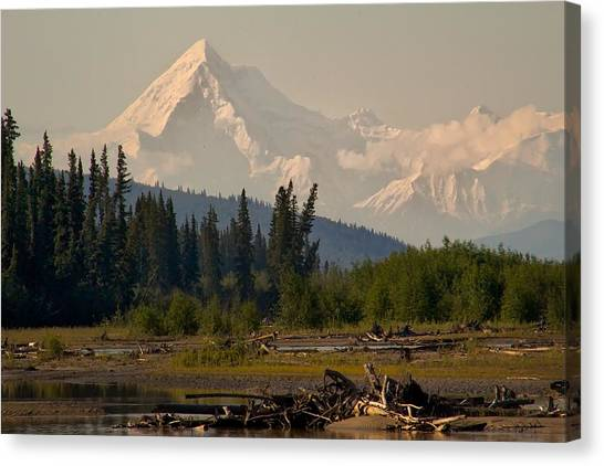 The Alaska Range At Mount Hayes Canvas Print