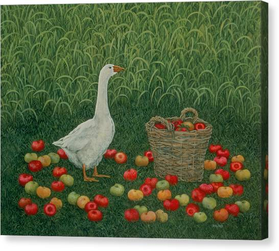 Fruit Baskets Canvas Print - The Apple Basket by Ditz