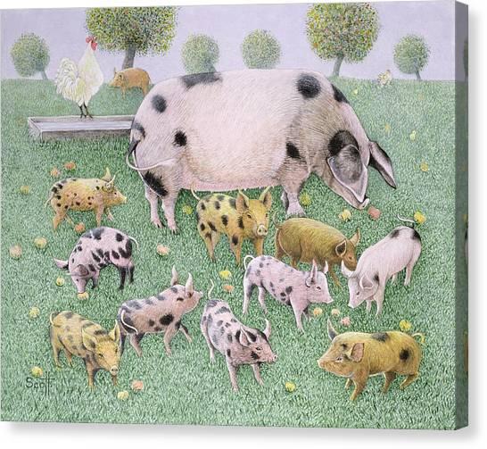 Pig Farms Canvas Print - The Apple Feast by Pat Scott