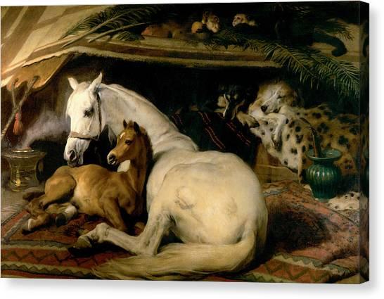 Landseer Canvas Print - The Arab Tent by Sir Edwin Landseer