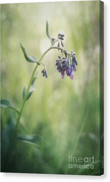 Grass Canvas Print - The Arrival Of Spring by Priska Wettstein