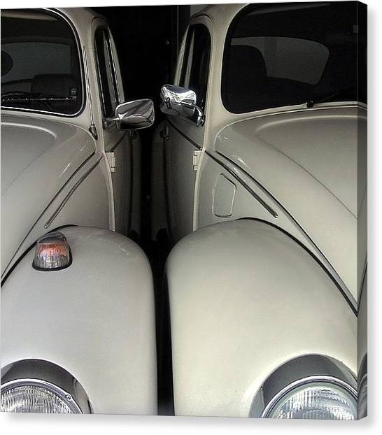 Decorative Canvas Print - The Authentic Love Bugs by Carlos Alkmin