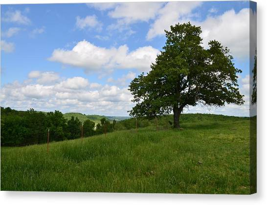 The Back Field Canvas Print