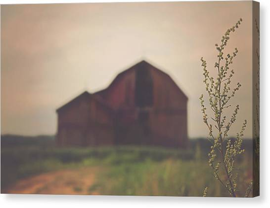 Flower Canvas Print - The Barn Daylight Version by Carrie Ann Grippo-Pike