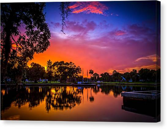 Bayous Canvas Print - The Bayou by Marvin Spates
