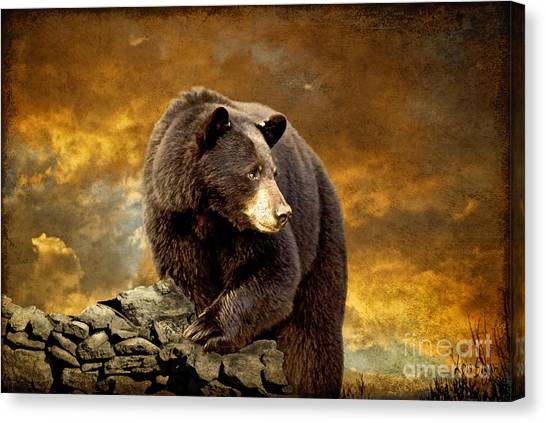 Mountain Sunset Canvas Print - The Bear Went Over The Mountain by Lois Bryan