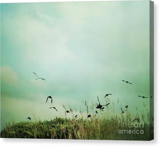The Beautiful Flight Canvas Print by Sharon Kalstek-Coty