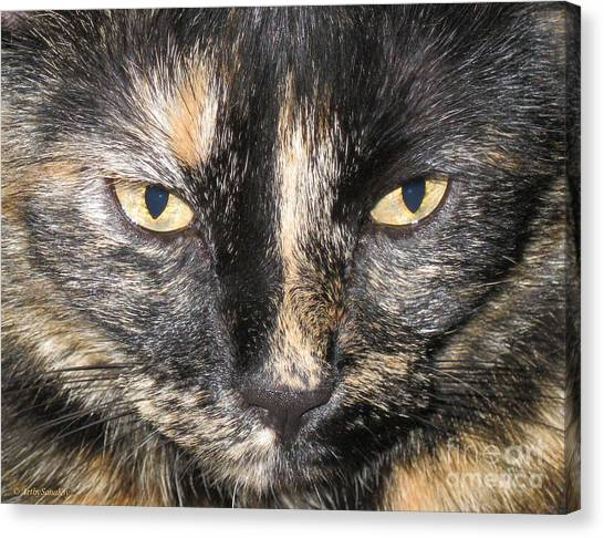 The Beauty Mau Canvas Print