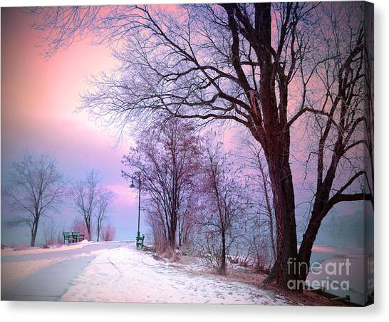 Okanagan Valley Canvas Print - The Benches In Winter by Tara Turner