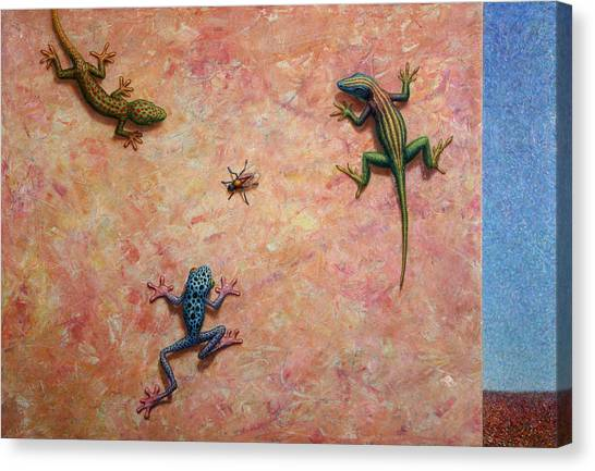 Frogs Canvas Print - The Big Fly by James W Johnson