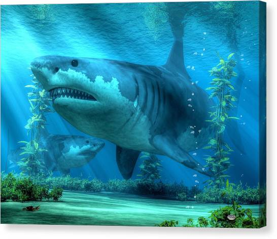 The Biggest Shark Canvas Print