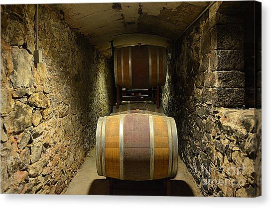 The Biltmore Estate Wine Barrels Canvas Print