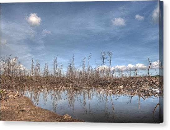 The Blue Water Desert Canvas Print by Imago Capture