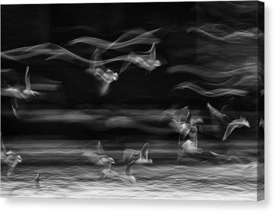 Iranian Canvas Print - The Boundary Between Reality And Fantasy by Ebrahim Bakhtari Bonab