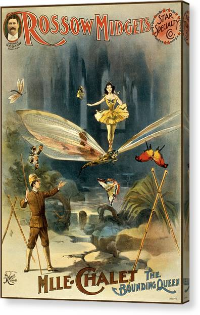 Dragon Fly Canvas Print - The Bounding Queen by Aged Pixel