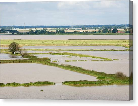 Climate Change Canvas Print - The Breach At Alkborough by Ashley Cooper