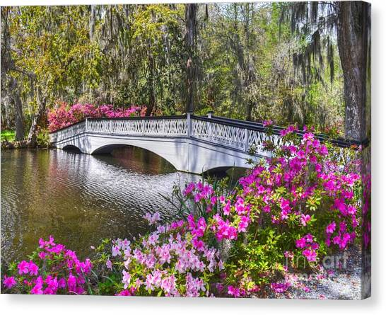 The Bridge At Magnolia Plantation Canvas Print