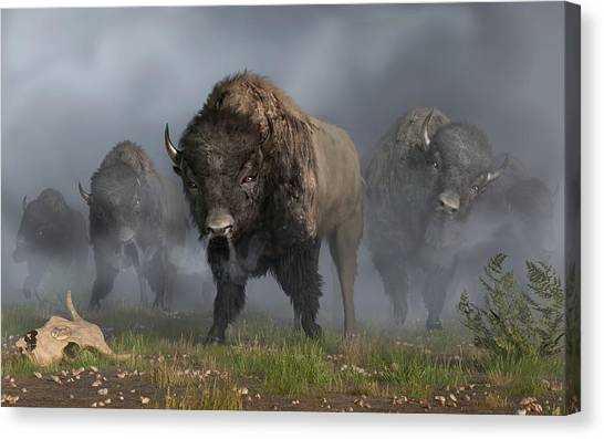 The Buffalo Vanguard Canvas Print