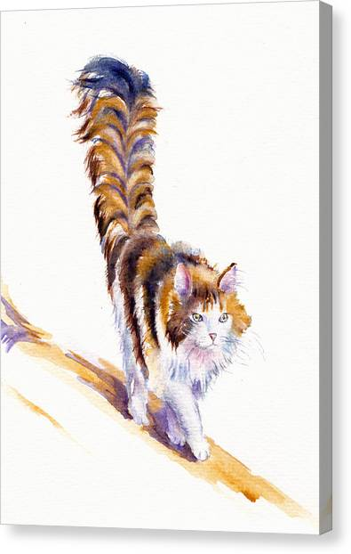 The Calico Cat That Walked By Himself Canvas Print