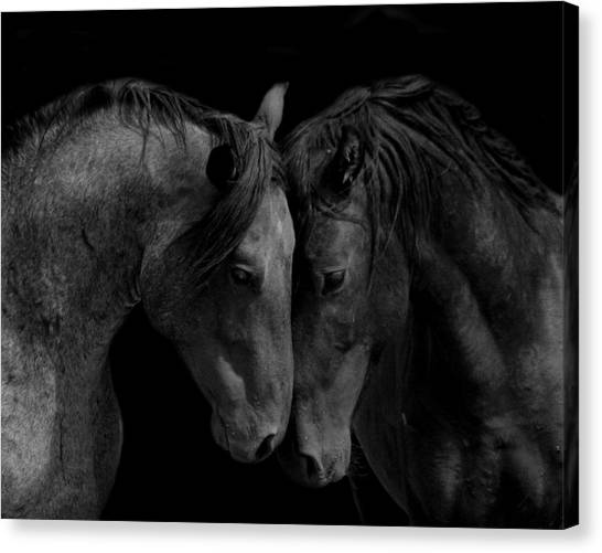 The Calm In Black And White Canvas Print