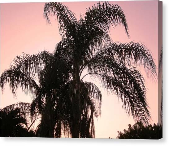 The Calm Of Twilight Canvas Print by Natache  DOyen