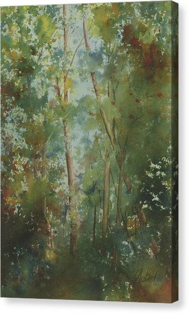 The Cathedral Pines Canvas Print