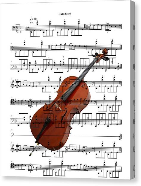 The Cello Canvas Print