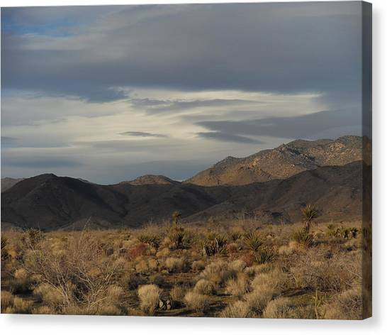The Cerbat Mountains In Winter Canvas Print
