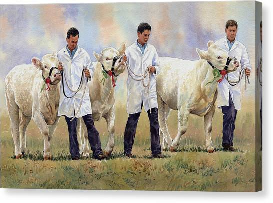 The Champions Canvas Print by Anthony Forster