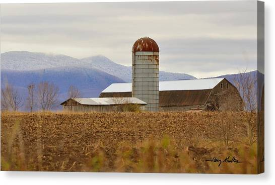 The Changing Seasons Canvas Print